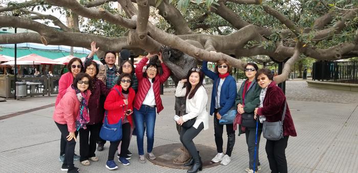 IM Tour 2019 : Argentia  : Buenos Aires # 2