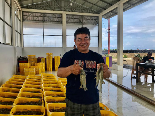 Indonesian shrimp production to achieve target by working groups establishment