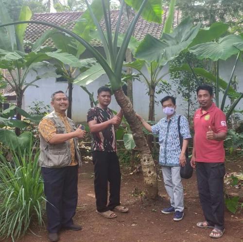 Asputaben Pandeglang Berpikir Keras untuk Capai Target Produksi sampai 300 ton/bulan