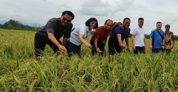 Investasi Pertanian, Agroindustri Semakin Relevan di Tengah Pandemic covid-19