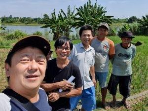 Permasalahan Petani Pisang di Indonesia pada Sistem Tanam