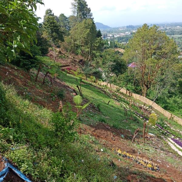 growisata, Sejarah Gunung Sinabung, Keindahan Danau Toba Menyatu