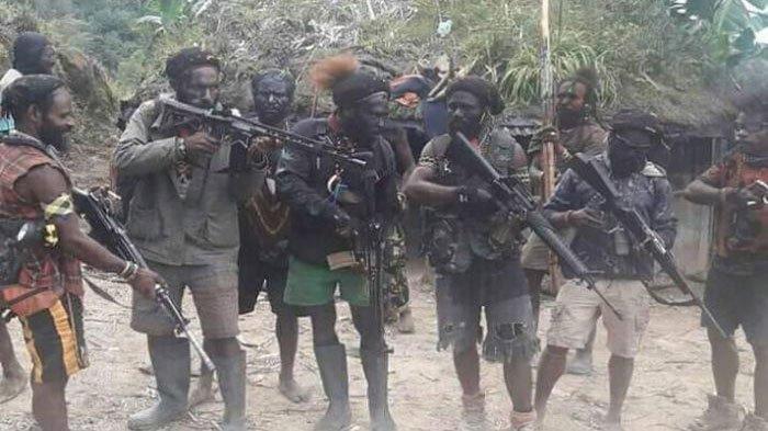 KKB di Papua Makin Sadis, Warga Ditembak Mukanya di Depan Istri, Bupati Intan Jaya Akui Resah