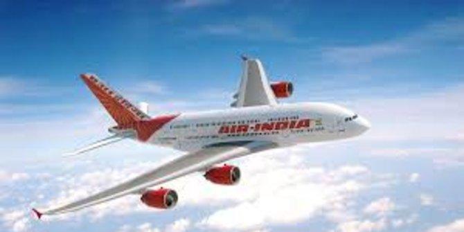 Pesawat Air India Tujuan AS Kembali ke Delhi Setelah Kelelawar Terbang dalam Kabin