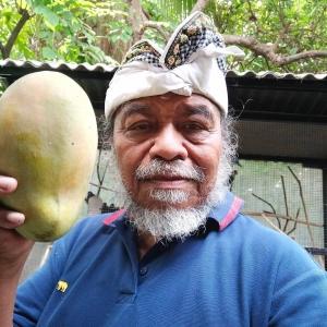 Jatropha Tidak Bernilai Ekonomis, Ditutup pada RSB di Malaysia tahun 2011