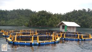 KJAZero Wastesebagai Solusi Kelestarian Danau Toba Sia-sia oleh Bupati